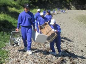 1.海岸の清掃