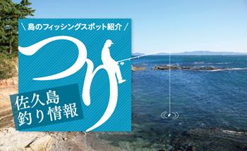 佐久島釣り情報