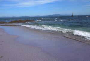 見て、紫のビーチ